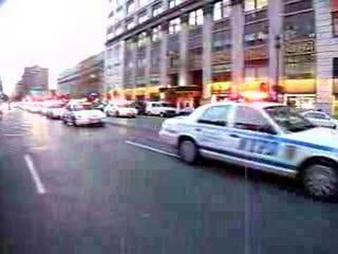 New York Police Department!! 40 cars.
