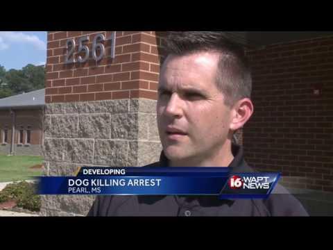 Mayoral candidate arrested for killing dog
