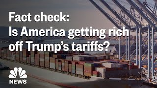 Fact Check: Is America Actually Getting Rich Off President Donald Trump's Tariffs? | NBC News - NBCNEWS