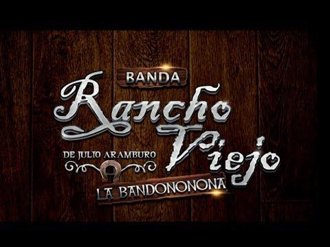 Las Guacamayas - Banda Rancho Viejo en Zapotitlan 2010