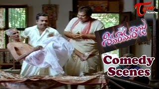 Siva Rama Raju Comedy Scenes | Back to Back | Jagapathi Babu | Venkat | Sivaji - NAVVULATV