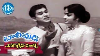 Evergreen Tollywood Hit Songs 222 || Allari Choopula Video Song || ANR, Bharathi || S Rejeshwara Rao - IDREAMMOVIES