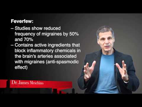 Nutrition Research Update: Migraine Headaches