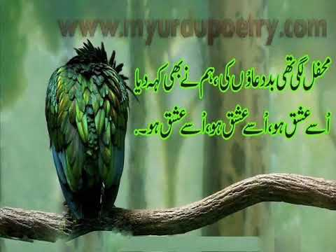 Ishq Urdu Design Poetry collection(www.myurdupoetry.com)
