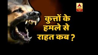 Sitapur Dog Menace: Local police with 11 teams investigating the situation - ABPNEWSTV