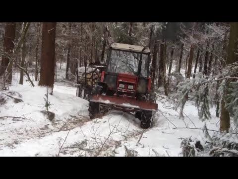 Zrywka w lesie tumiany