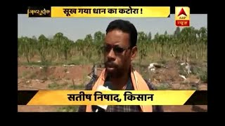 Master Stroke: Drought, rain and hailstorm become reason behind plight of Chhattisgarh's f - ABPNEWSTV