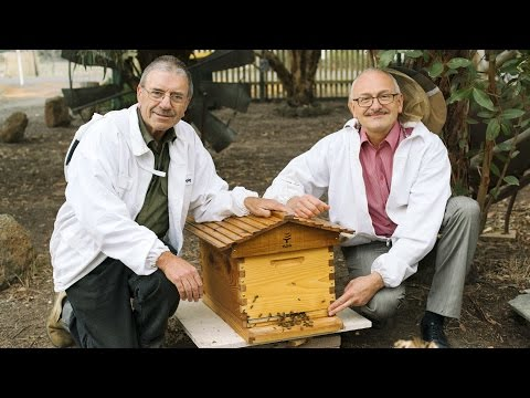 How to pack down a Flow Hive for Winter in Victoria, Australia