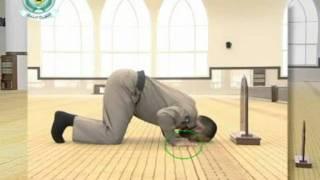 الاخطاء الشائعه في اداء الصلاة