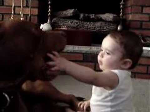 PITBULL ATTACKS 8 MONTH OLD