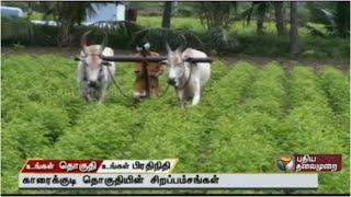 """Ungal Thoguthi Ungal Pradhinithi 04-09-2015 """"Karaikudi"""" – Puthiya Thalaimurai TV Show"""