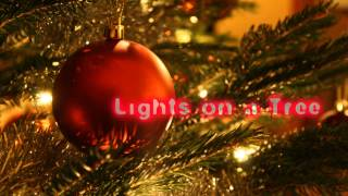 Royalty Free :Lights on a Tree