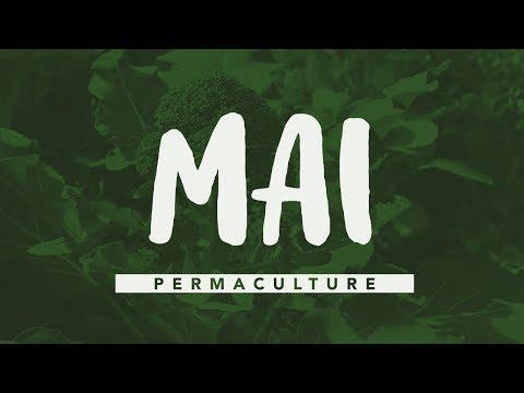 Que faire au jardin en Mai ? #permaculture #agroécologie