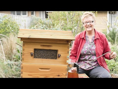 Inspired honey harvesting from the Pacific Islands to the Great Ocean Road