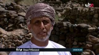 خط | مراسلات من قرية مجزي | الأربعاء 16 رمضان 1437 هـ