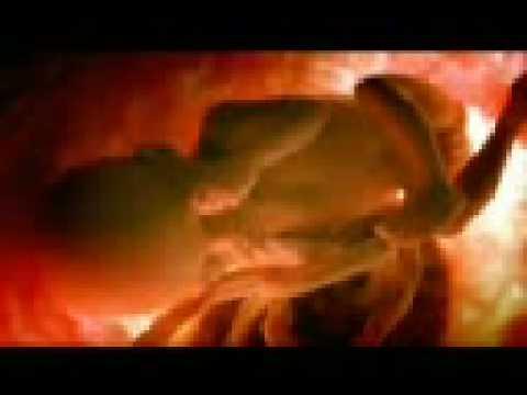 poema del aborto mary isabel paco gutierrez