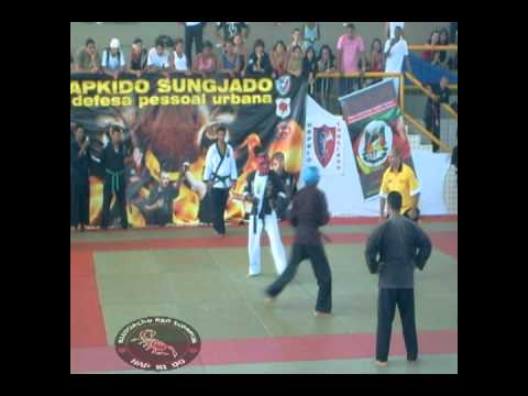 hapkido red scorpion