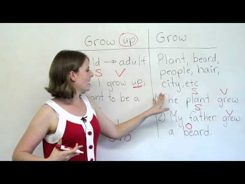 Grammar Mistakes - GROW or GROW UP?