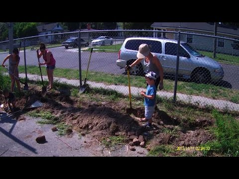 Permaculture Paradise: Franklin St. Food Forest!