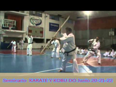 JUNIO KARATE Y KOBUDO