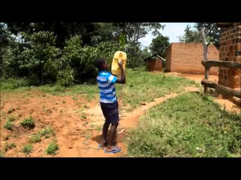 Water use on an African farm