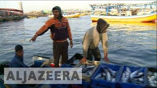Israel's temporary expansion of Gaza's fishing zone fails to ease concerns - ALJAZEERAENGLISH