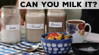 Can You Milk It? Flaxseeds, Hemp + Banana | Food Network - FOODNETWORKTV