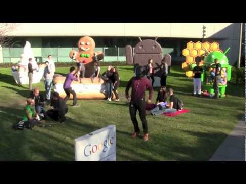 The Harlem Shake (Google Office Edition)