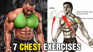 9 Exercises To Build A Big Back7 Chest Exercises You Should Be Doing