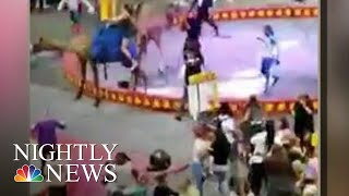 7 Injured When Camel Gets Spooked At Pittsburgh Circus | NBC Nightly News - NBCNEWS