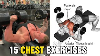 15 Best Exercise For Bigger Chest15 Best Exercise For Bigger Chest