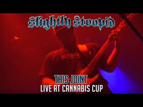 Slightly Stoopid live