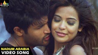 Aravind 2 Movie Nadumaribia Beach Video Song || Srinivas, Madhavi Latha - SRIBALAJIMOVIES