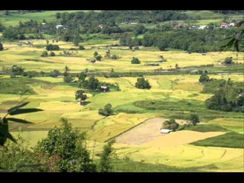 Lagu Dusun Sabah - Sinding Kalangadan ( Severinus Joseph )