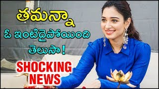 Tamannaah Bhatia PurchasesA Luxurious Versova Apartment In Mumbai At Double Price - RAJSHRITELUGU