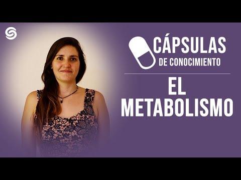 Cápsula de conocimiento: Metabolismo