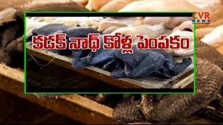 కడక్ నాథ్ కోళ్ల పెంపకం | How to start Kadaknath chicken farming | Raithe Raju - CVRNEWSOFFICIAL