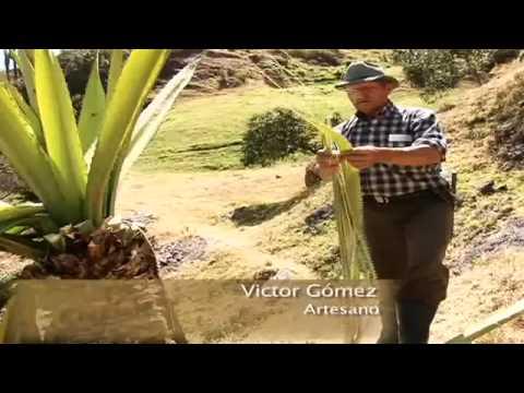 Guacamayas Boyacá, Campesinos fabrican el color. mp4