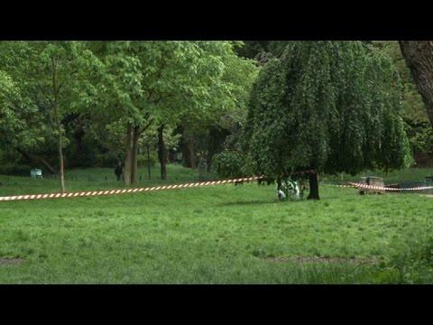 Un rayo cayó en un parque de París e hirió a 11 personas