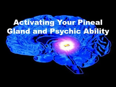 Activating Your Pineal Gland and Psychic Ability - Bernard Alvarez