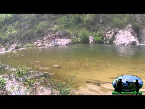 ΨΑΡΕΜΑ ΚΕΦΑΛΟΥ - EUROPEAN CHUB FISHING