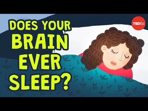 TED-Ed. Can you be awake and asleep at the same time? (Ar galite būti budrus ir miegoti vienu metu?)