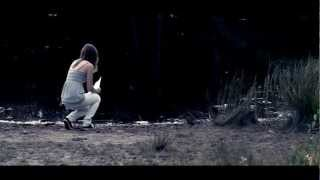 """""""Safe and Sound"""" (Taylor Swift feat. The Civil Wars) -  Annie Stettin feat. Mike Attinger"""