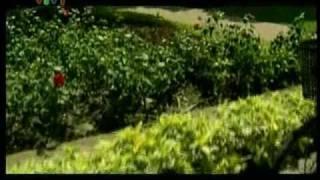 Bong dung muon khoc - Bỗng dưng muốn khóc - tập 26
