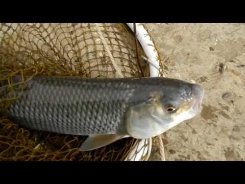 магазины рыбалки в дагестане