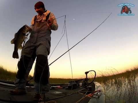 D&M Custom Baits Buzz Saw 7 Pounder on Lake Okeechobee