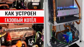 Настенные газовые котлы: устройство и принцип работы