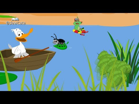 Edewcate english rhymes : A little white duck nursery rhyme