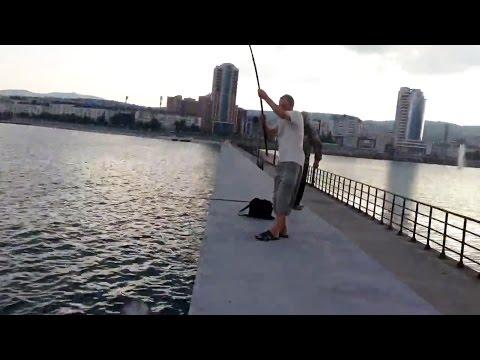 рыбалка новороссийск мол вечер