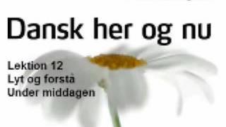 dansk her og nu verber